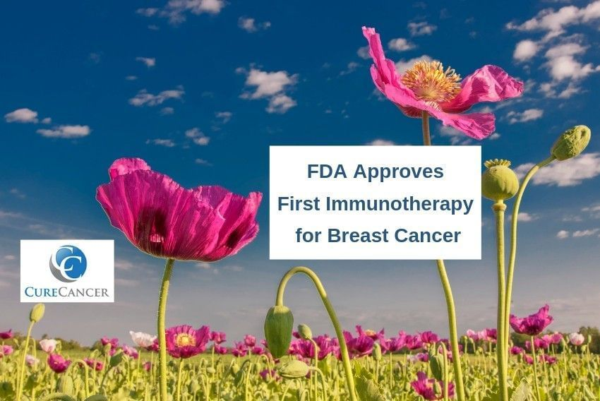 FDA Approves First Immunotherapy for Breast Cancer
